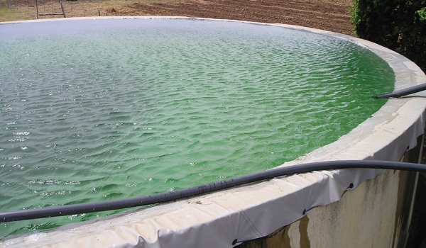 Hydrex - Brick reservoir fitted with liner